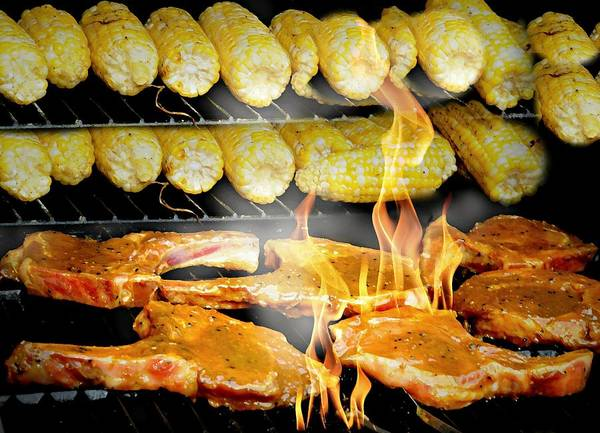 Wall Art - Photograph - The Bbq by Diana Angstadt