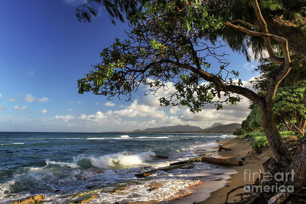 Photograph - The Beach At Kapaa by James Eddy
