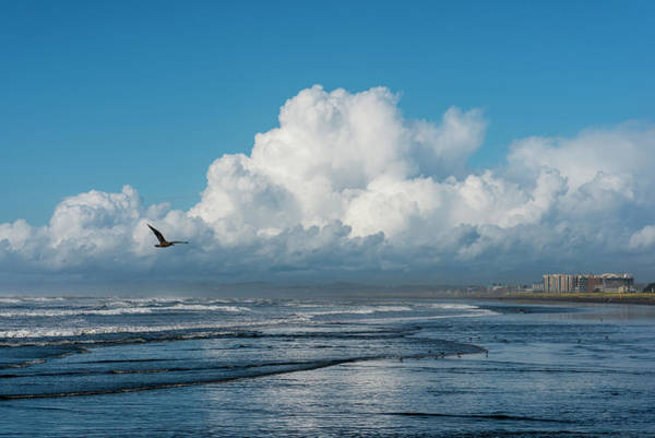 Photograph - The Beach At Seaside by Robert Potts