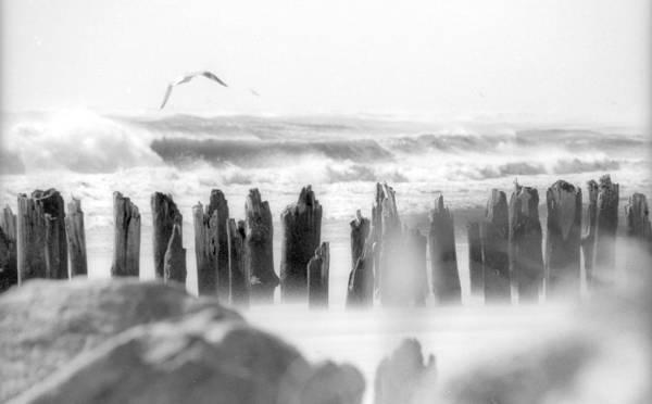 Michael Miller Wall Art - Photograph - The Beach Poem by Michael Miller