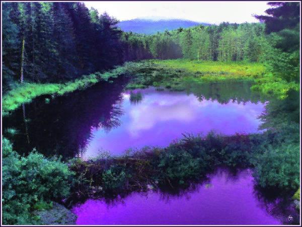 Photograph - The Beaver Pond by Wayne King