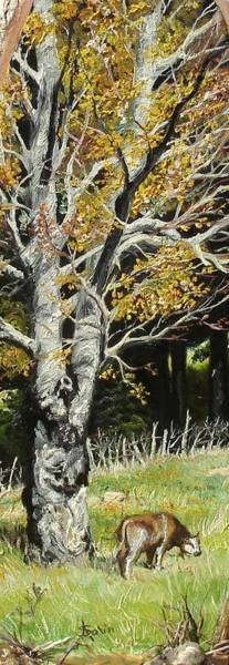 Painting - The Beech by Sorin Apostolescu