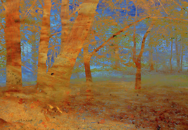 Photograph - The Beech Wood by Valerie Anne Kelly