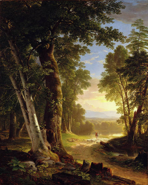 Painting - The Beeches By Asher Brown Durand by Asher Brown Durand