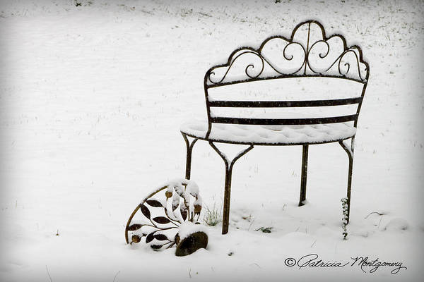 Photograph - The Bench by Patricia Montgomery