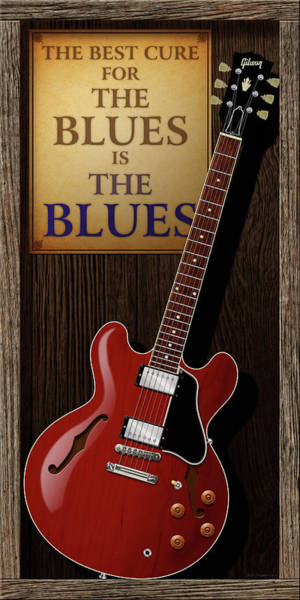 Wall Art - Digital Art - The Best Cure For The Blues 335 by WB Johnston