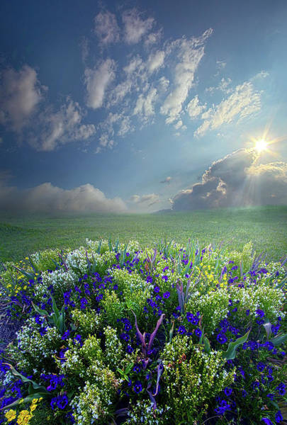 Photograph - The Best Things In Life Are Made Simply by Phil Koch