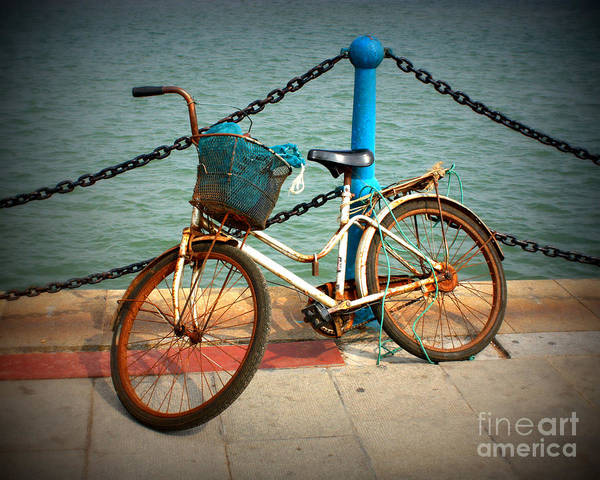 Rusty Chain Wall Art - Photograph - The Bicycle by Carol Groenen