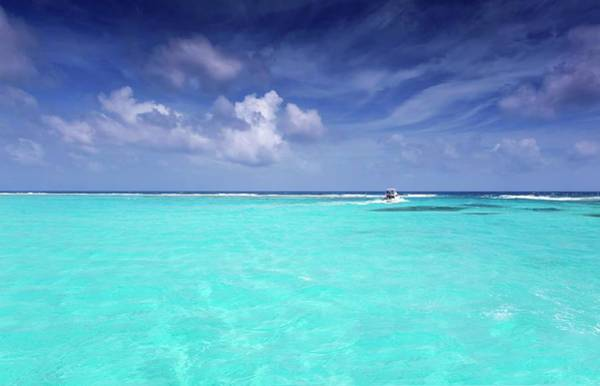 Wall Art - Photograph - The Big Blue by Stephen Anderson