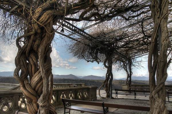 Richard Morris Hunt Wall Art - Photograph - The Biltmore Library Terrace by Jane Linders