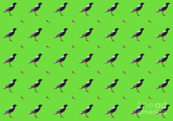 Donegal Digital Art - The Birds And The Bees Green Pattern Design by Eddie Barron