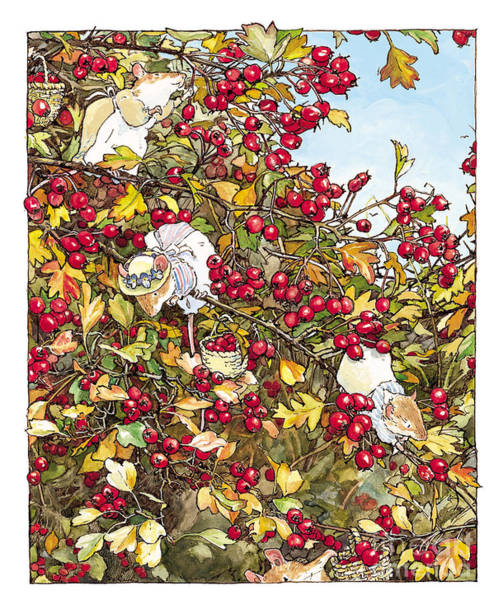 Wall Art - Drawing - The Blackthorn Bush by Brambly Hedge