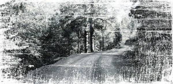 Photograph - The Bleached Dirt Road by Beauty For God