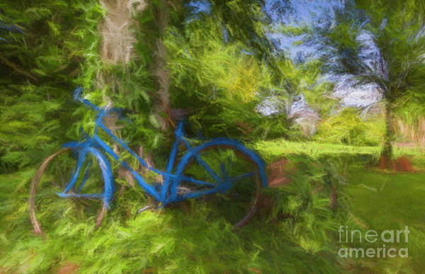 Photograph - The Blue Bicycle by Dominique Guillaume
