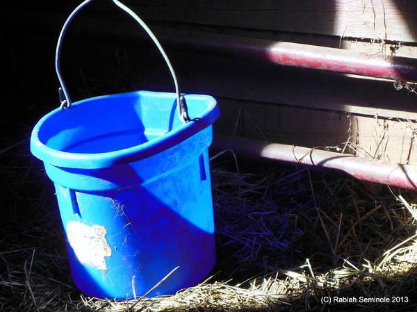 The Blue Bucket Art Print