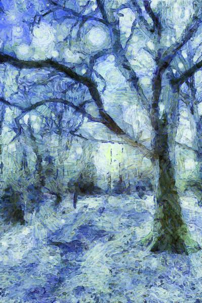 Wall Art - Mixed Media - The Blue Forest Art by David Pyatt