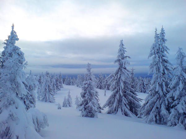 Lillehammer Photograph - The Blue Hour by Are Lund