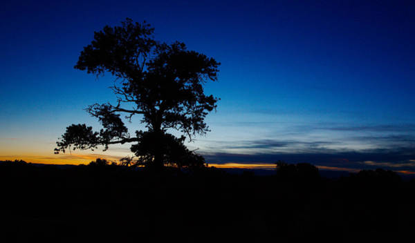 Photograph - The Blues Of Dusk by David Andersen