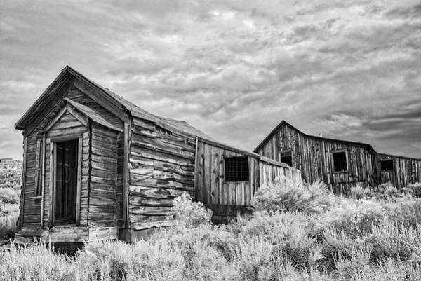 Photograph - The Bodie Bungalows In Black And White by Lynn Bauer