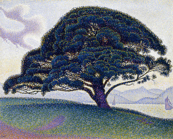 Neo-impressionism Wall Art - Painting - The Bonaventure Pine  by Paul Signac