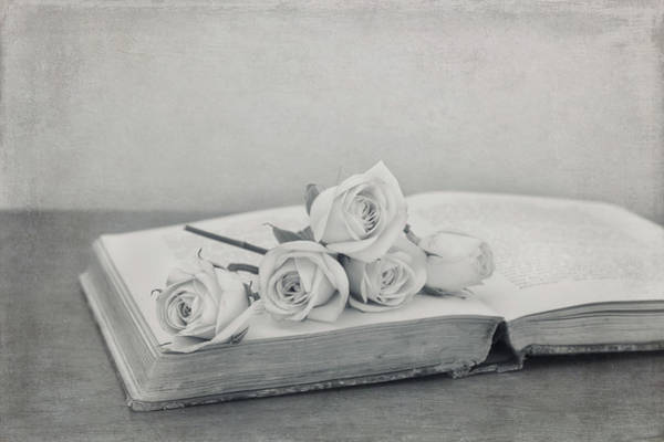 Photograph - The Book Of Love by Kim Hojnacki