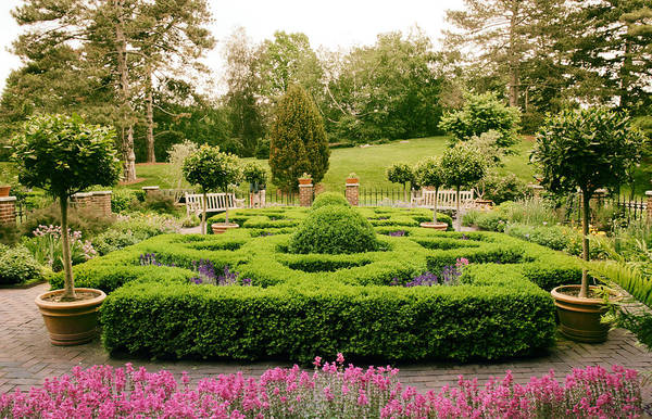 Formal Garden Photograph - The Botanical Herb Garden by Jessica Jenney