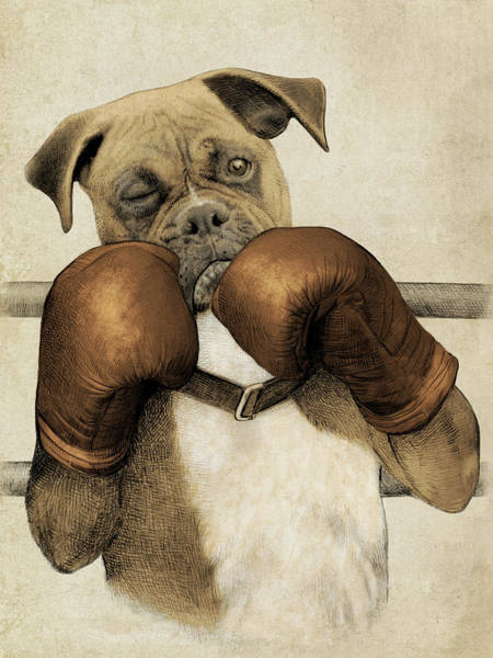 Funny Wall Art - Drawing - The Boxer by Eric Fan