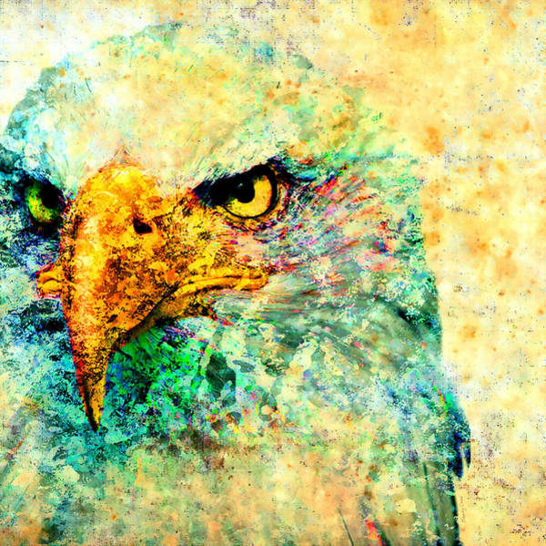 Bird Watercolor Mixed Media -  American Eagle  by Stacey Chiew
