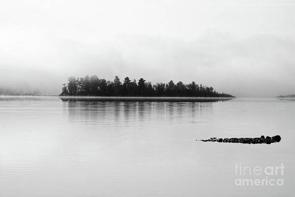 Photograph - The Breaking Fog by Cathy Beharriell