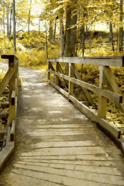 Photograph - The Bridge Over by Sharon Popek