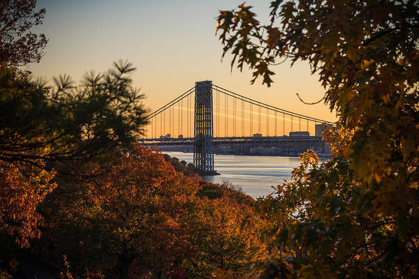 Photograph - The Bridge Through The Trees by Kristopher Schoenleber
