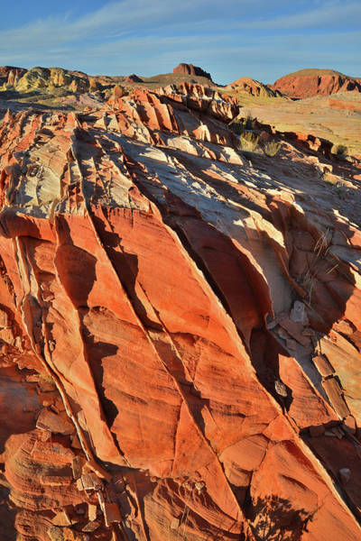 Photograph - The Brilliant Color Of Valley Of Fire by Ray Mathis