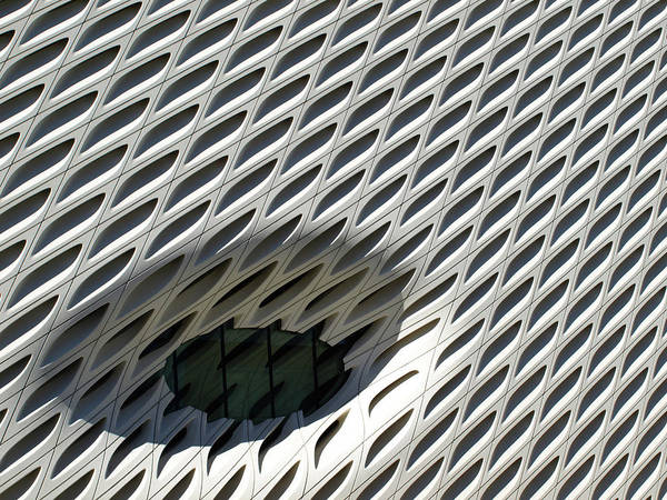 Photograph - The Broad  by Mary Capriole