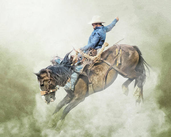 Wall Art - Photograph - The Bronc Stomper by Ron McGinnis