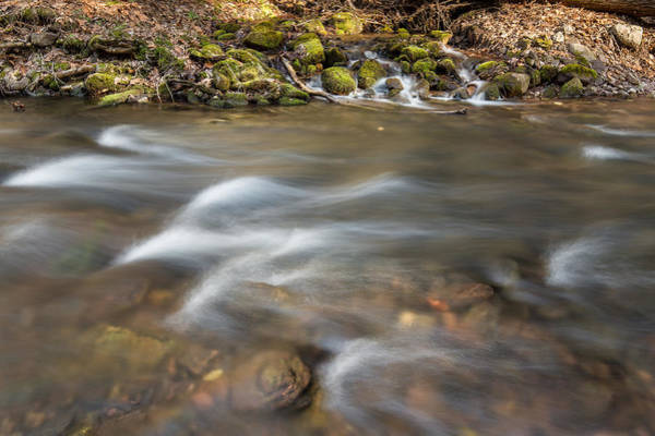 Photograph - The Brook by Sara Hudock