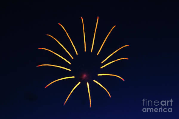 Fireworks Show Wall Art - Photograph - The Bug by Robert Bales