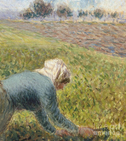 Wall Art - Painting - The Cabbage Gatherers  Detail by Camille Pissarro
