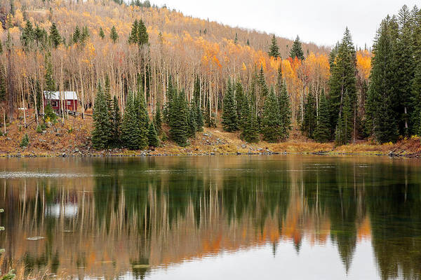 Grand Mesa National Forest Photograph - The Cabin By The Lake by John Bartelt
