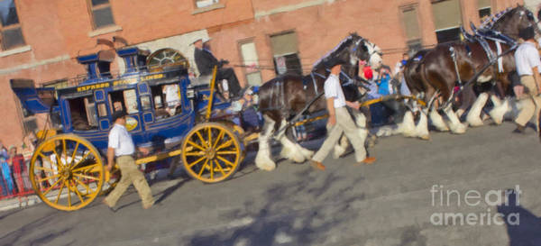 Photograph - The Calgary Stampede Carriage by Donna L Munro
