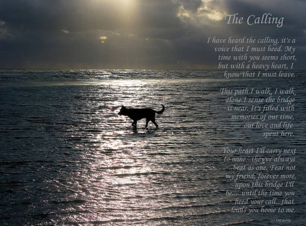 Wall Art - Photograph - The Calling  Version Two by Sue Long