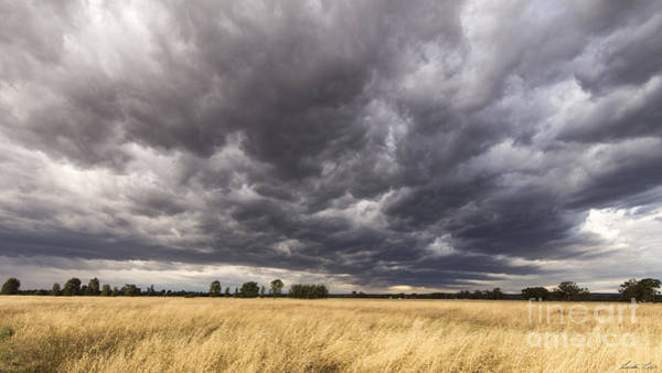 Grey Cloud Photograph - The Calm Before The Storm by Linda Lees