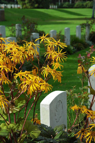 Photograph - The Canadian Cemetery In Holland by Ginger Wakem
