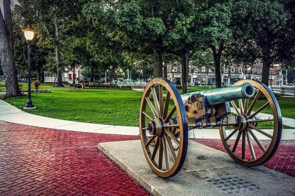 The Cannon In The Park Art Print