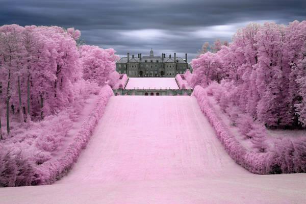 Photograph - The Castle by Brian Hale
