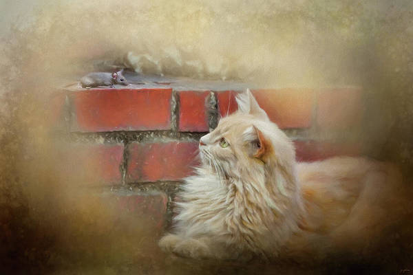 Photograph - The Cat And The Mouse by Jai Johnson