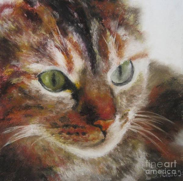 Wall Art - Painting - The Cat Series I by Sabina Haas