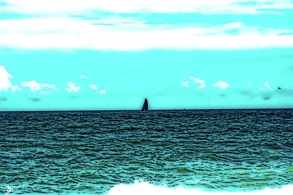 Photograph - The Catamaran In The Distance by Gina O'Brien