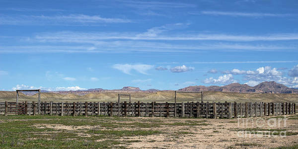 Photograph - The Cattle Pens by Jim Garrison