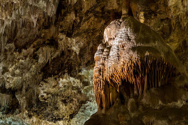 Photograph - The Caveman Of Carlsbad by Ron Pate