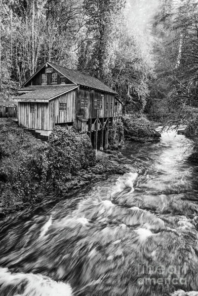 Wall Art - Photograph - The Cedar Mill And Creek by Jamie Pham